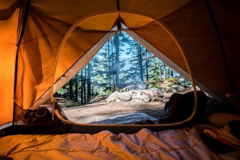 Gut Instinct: Gone Camping